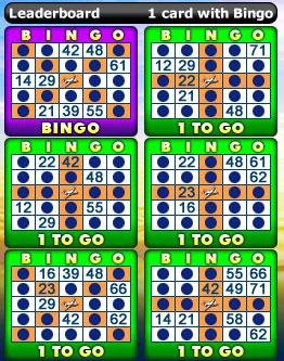 playing bingo cabin 75 ball bingo game